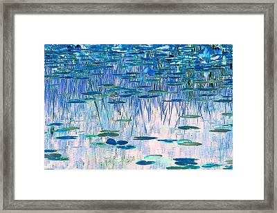 Water Lilies Framed Print by Chris Anderson