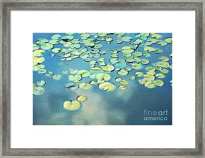Water Lilies Framed Print by Darren Fisher