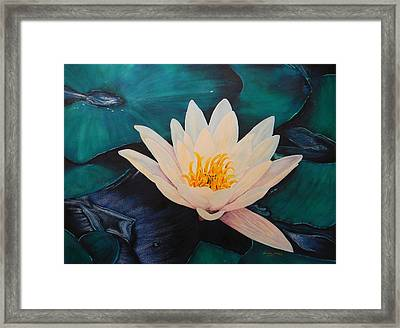 Water Lily Framed Print by Adel Nemeth