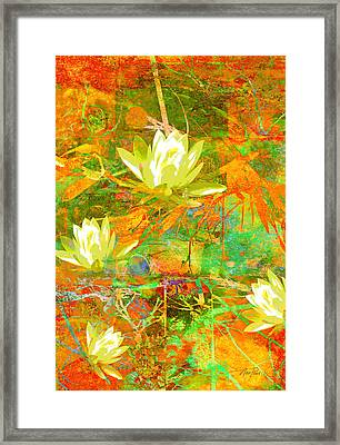Water Lily Collage Abstract Flowers  Nature Art  Framed Print by Ann Powell