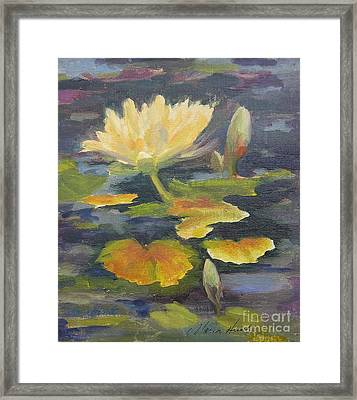 Water Lily In The Fountain Framed Print by Maria Hunt