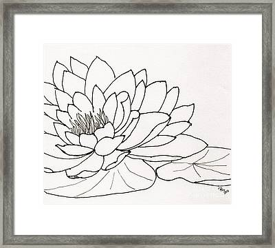 Water Lily Line Drawing Framed Print by Anita Lewis