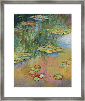 Water Lily Framed Print by Michael Creese