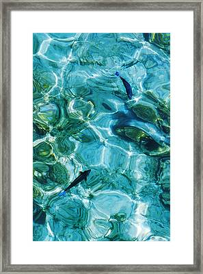 Water Meditation II. Five Elements. Healing With Feng Shui And Color Therapy In Interior Design Framed Print by Jenny Rainbow