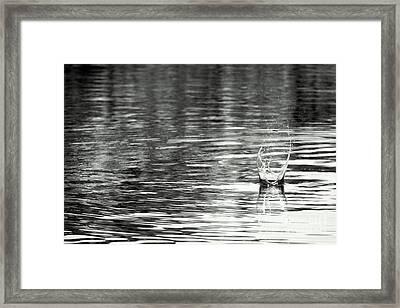 Water Framed Print by Prajakta P