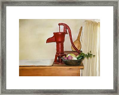 Water Pump Framed Print by Mary Timman