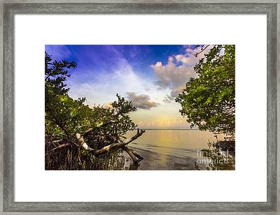 Water Sky Framed Print by Marvin Spates