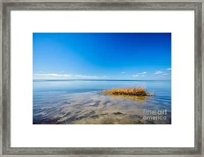 Water World I - Outer Banks Framed Print by Dan Carmichael