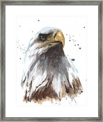 Watercolor Eagle Framed Print by Alison Fennell