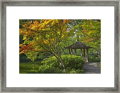 Watercolor Gardens Framed Print by Joan Carroll