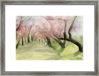 Watercolor Painting Of Cherry Blossom Trees In Central Park Nyc Framed Print by Beverly Brown