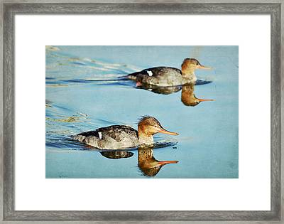 Watercolors In Nature 4 Framed Print by Fraida Gutovich