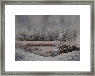 Waterlily Pond In Snow Framed Print by Alla Dickson