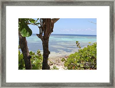 Waters Edge Framed Print by Carey Chen