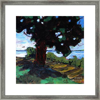 Waukegan State Park Framed Print by Charlie Spear