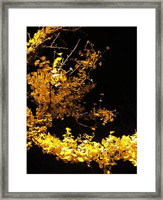 Wave Of Yellow Framed Print by Guy Ricketts