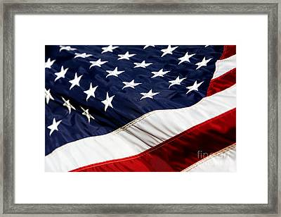 Waving At America Framed Print by Lincoln Rogers