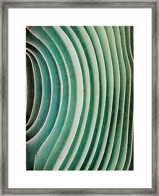 Wavy Glass 4 Framed Print by Hakon Soreide