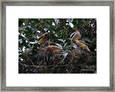 Wax Wings Supper  Framed Print by Skip Willits