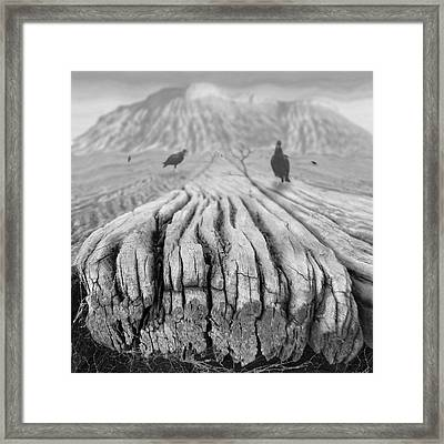 Weathered 3 Framed Print by Mike McGlothlen