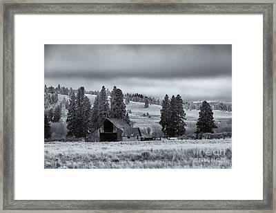 Weathered Beneath The Storm Framed Print by Mike  Dawson