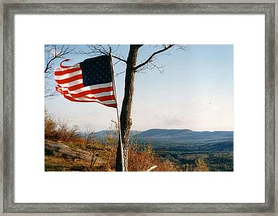 Weathered Stars And Stripes Framed Print by David Fiske
