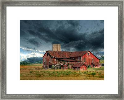 Weathering The Storm Framed Print by Lori Deiter