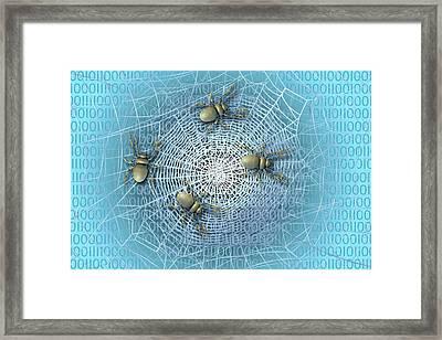 Web Crawlers Framed Print by Carol & Mike Werner