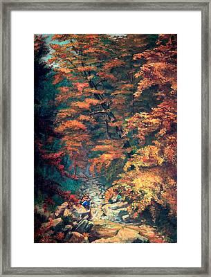 Webster's Falls Framed Print by Hanne Lore Koehler
