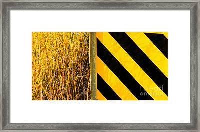 Weeds Versus Man Framed Print by Joe Jake Pratt