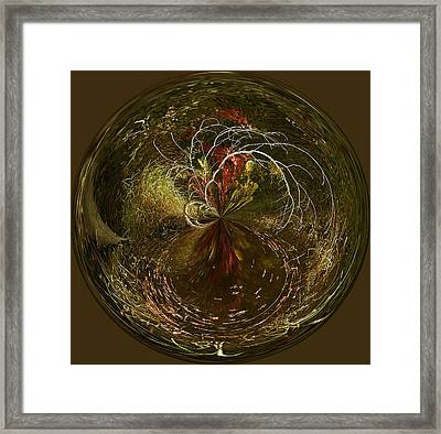 Weeping Branches Framed Print by Cindi Ressler