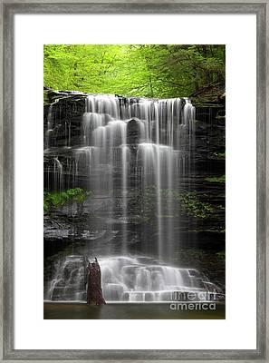 Weeping Wilderness Waterfall Framed Print by John Stephens