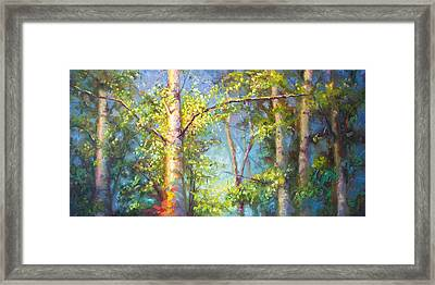 Welcome Home - Birch And Aspen Trees Framed Print by Talya Johnson