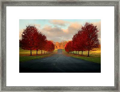 Welcome Home Framed Print by Rob Blair