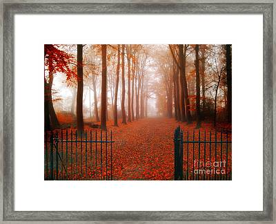 Welcome Framed Print by Jacky Gerritsen
