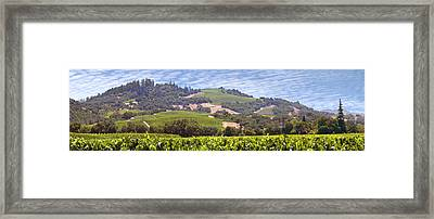 Welcome To Wine Country Framed Print by Mike McGlothlen