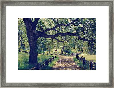 Welcoming Framed Print by Laurie Search