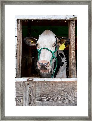 Well Hello There Framed Print by Edward Fielding