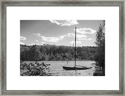Wellesley College Waban Lake Framed Print by University Icons