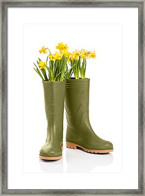 Wellington Boots Framed Print by Amanda Elwell