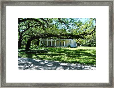 Wesley House And The Oak Framed Print by Michele Kaiser