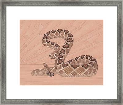 Western Diamondback Rattlesnake Framed Print by Nathan Marcy