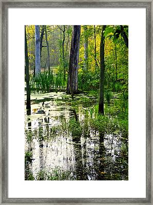 Wetlands Framed Print by Frozen in Time Fine Art Photography