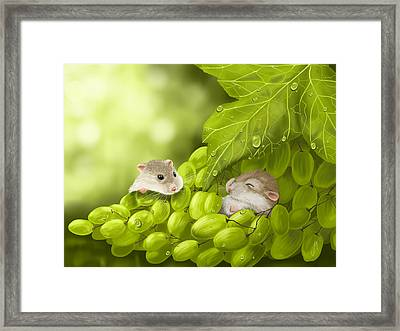 What A Binge... Framed Print by Veronica Minozzi