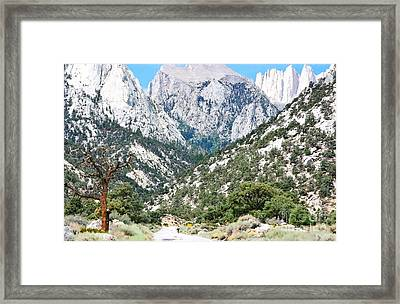What A Ride Framed Print by Marilyn Diaz