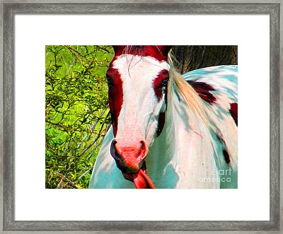 What Does It Mean ? Framed Print by Tina M Wenger