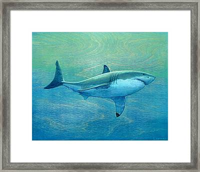 What Lurks Below Framed Print by Nathan Ledyard
