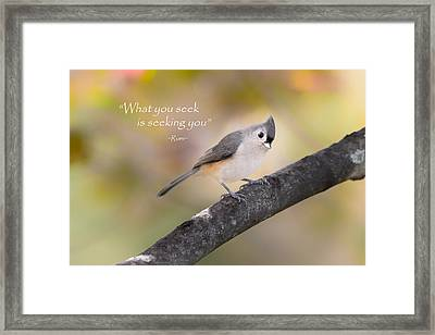 What You Seek Framed Print by Bill Wakeley