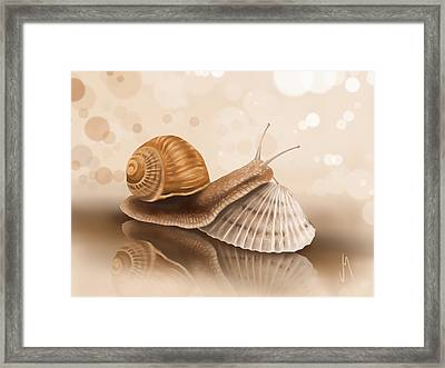 What's The Difference? Framed Print by Veronica Minozzi