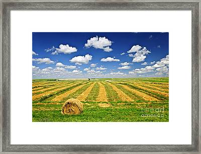 Wheat Farm Field And Hay Bales At Harvest In Saskatchewan Framed Print by Elena Elisseeva